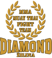 Diamond Gym Zilina logo